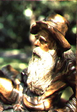 Close-up view of Rip Van Winkle's face